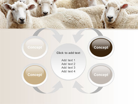 Sheep Flock PowerPoint Template Slide 6