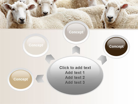 Sheep Flock PowerPoint Template Slide 7