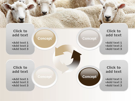 Sheep Flock PowerPoint Template Slide 9