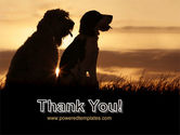 Dog Couple PowerPoint Template#20