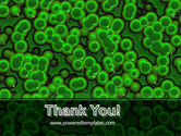 Chlorophylls Free PowerPoint Template#20
