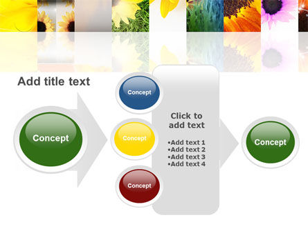 Open Flowers Bright Collage PowerPoint Template Slide 17