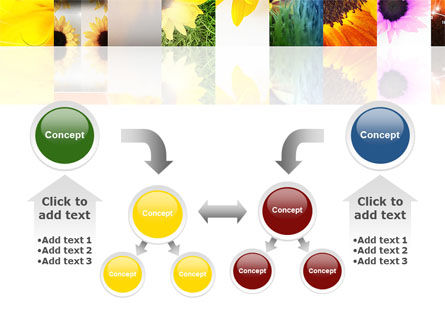 Open Flowers Bright Collage PowerPoint Template Slide 19