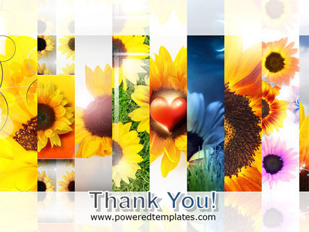 Open Flowers Bright Collage PowerPoint Template Slide 20