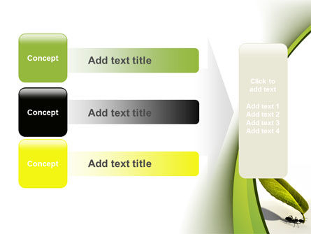 Spring Ant PowerPoint Template Slide 12