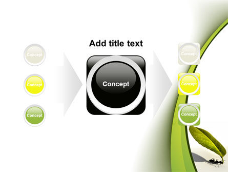Spring Ant PowerPoint Template Slide 17