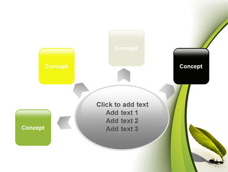 Spring Ant PowerPoint Template Slide 7