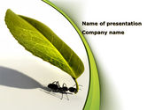 Business Concepts: Spring Ant PowerPoint Template #08566