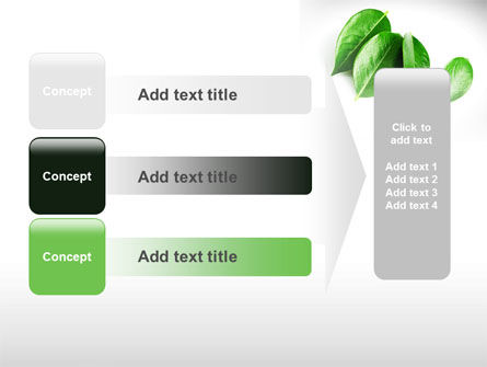Green Leaves PowerPoint Template Slide 12