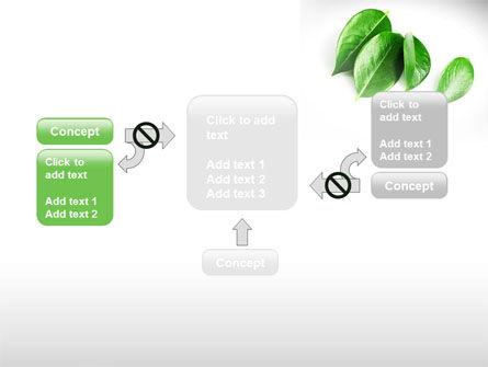Green Leaves PowerPoint Template Slide 13