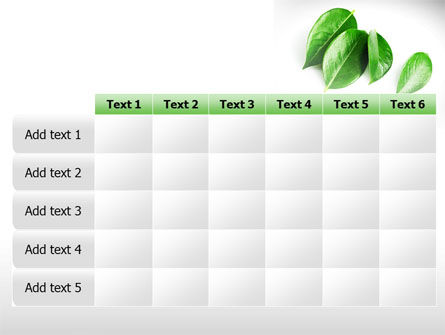 Green Leaves PowerPoint Template Slide 15