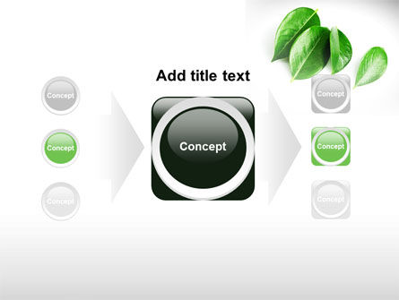 Green Leaves PowerPoint Template Slide 17