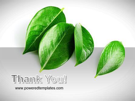 Green Leaves PowerPoint Template Slide 20