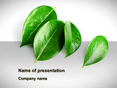 Agriculture: Green Leaves PowerPoint Template #08639