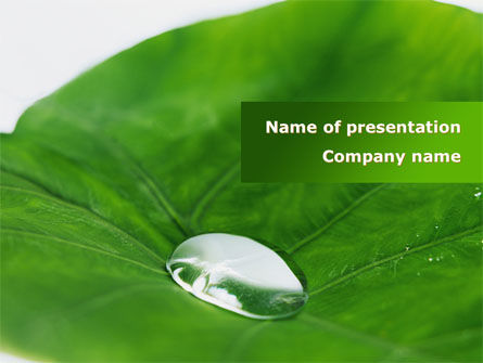 Nature & Environment: Morning Dew PowerPoint Template #08648