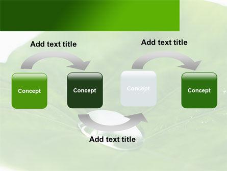 Morning Dew PowerPoint Template, Slide 4, 08648, Nature & Environment — PoweredTemplate.com