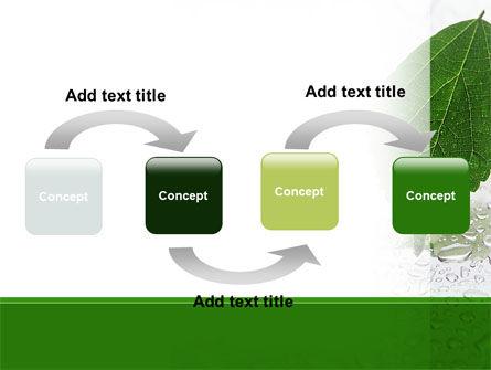 Hydroponics PowerPoint Template, Slide 4, 08683, Nature & Environment — PoweredTemplate.com