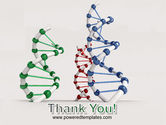 Plastic DNA Model PowerPoint Template#20
