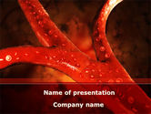Medical: Blood Vessels PowerPoint Template #08778