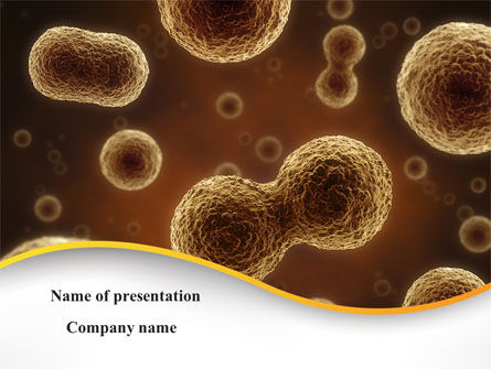 Medical: Cell Meiosis PowerPoint Template #08793