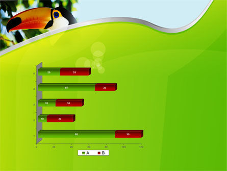 Southern Mexico Toucan PowerPoint Template Slide 11