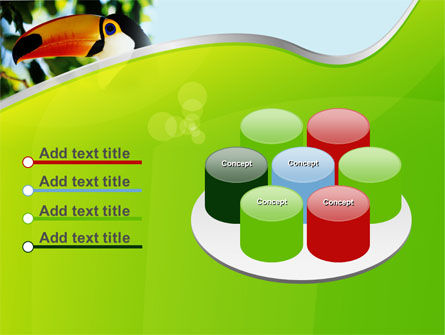 Southern Mexico Toucan PowerPoint Template Slide 12