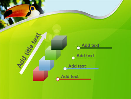 Southern Mexico Toucan PowerPoint Template Slide 14