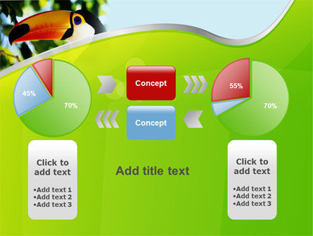 Southern Mexico Toucan PowerPoint Template Slide 16