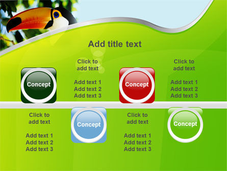 Southern Mexico Toucan PowerPoint Template Slide 18