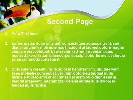 Southern Mexico Toucan PowerPoint Template, Slide 2, 08813, Animals and Pets — PoweredTemplate.com