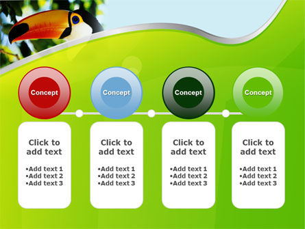 Southern Mexico Toucan PowerPoint Template Slide 5