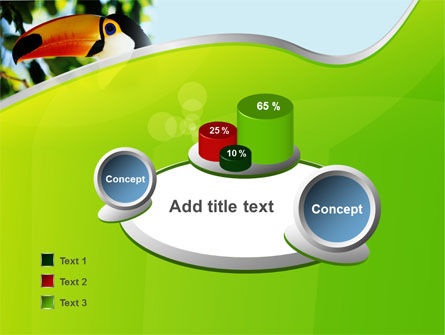 Southern Mexico Toucan PowerPoint Template Slide 6