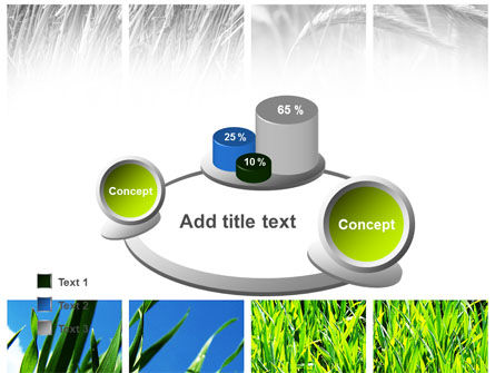 Wheats PowerPoint Template Slide 16