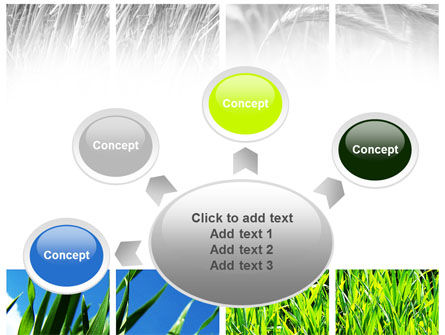 Wheats PowerPoint Template Slide 7