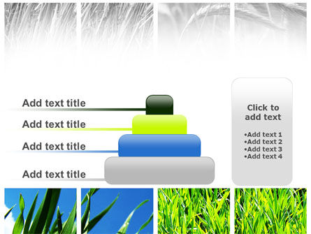 Wheats PowerPoint Template Slide 8