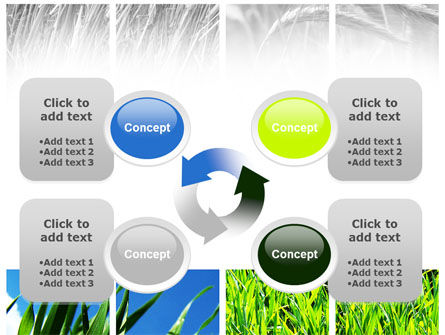 Wheats PowerPoint Template Slide 9