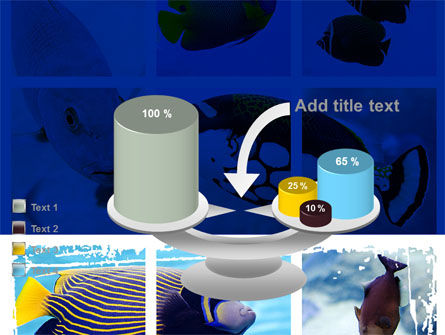 Tropical Fish Collage PowerPoint Template Slide 10
