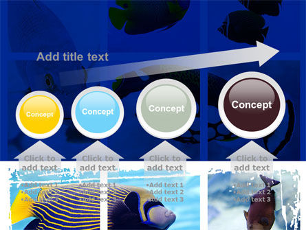 Tropical Fish Collage PowerPoint Template Slide 13