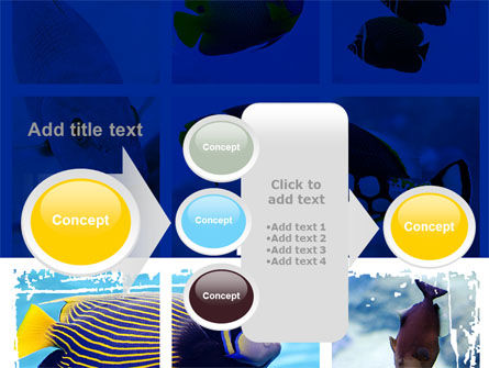 Tropical Fish Collage PowerPoint Template Slide 17