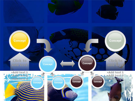 Tropical Fish Collage PowerPoint Template Slide 19