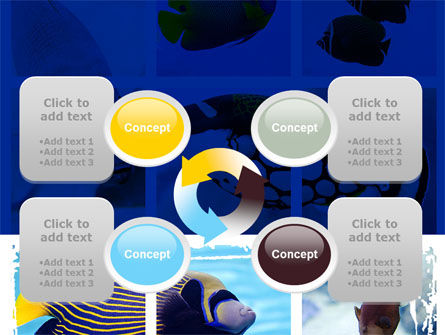 Tropical Fish Collage PowerPoint Template Slide 9