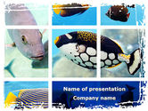 Animals and Pets: Tropische fischcollage PowerPoint Vorlage #08824