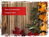 Nature & Environment: Leaf Litter PowerPoint Template #08827