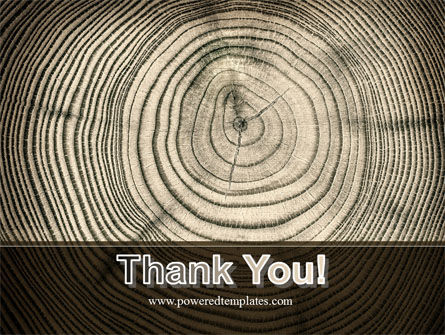 Wooden Growth Rings PowerPoint Template Slide 20