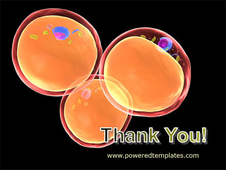 Cell Fission PowerPoint Template Slide 20