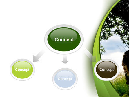 Green Tree PowerPoint Template, Slide 4, 08958, Nature & Environment — PoweredTemplate.com