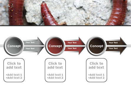 Earthworm PowerPoint Template Slide 11
