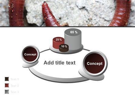 Earthworm PowerPoint Template Slide 13