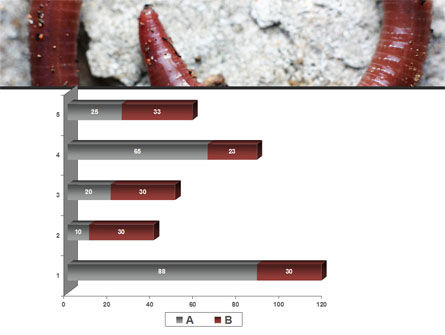 Earthworm PowerPoint Template Slide 17