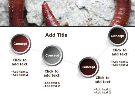 Earthworm PowerPoint Template Slide 6
